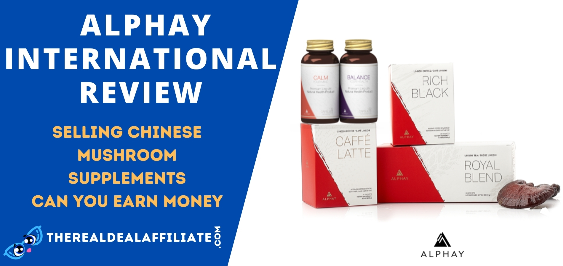 Alphay International Feature Image